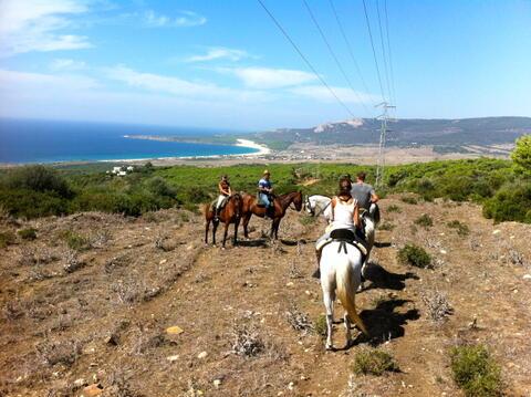 Paseos a Caballo en Tarifa - caballos6.jpg