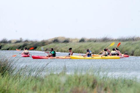 Kayak en Tarifa - Ruta en Kayak por el Río Jara en Tarifa