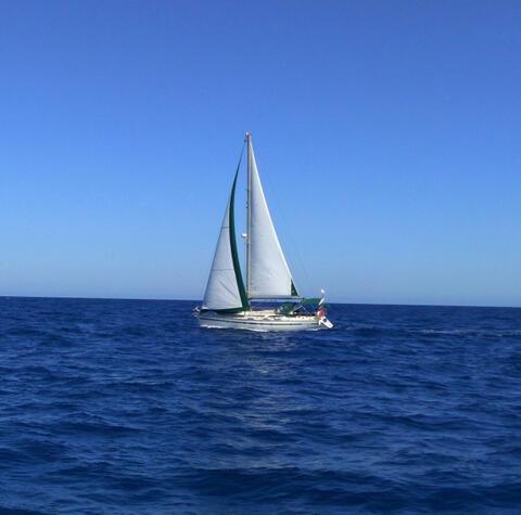 Paseos en Barco en Tarifa - Barco en Tarifa 20.jpg